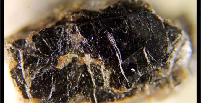 Érbio no mineral yftisita