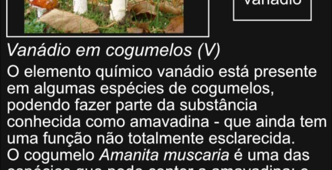 Vanádio em cogumelos